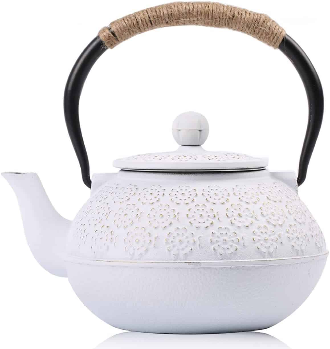 Cast Iron Teapot Sotya Tetsubin Japanese Tea Kettle