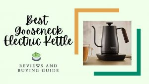 best gooseneck electric kettle
