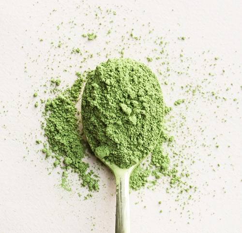 Matcha Scoop1